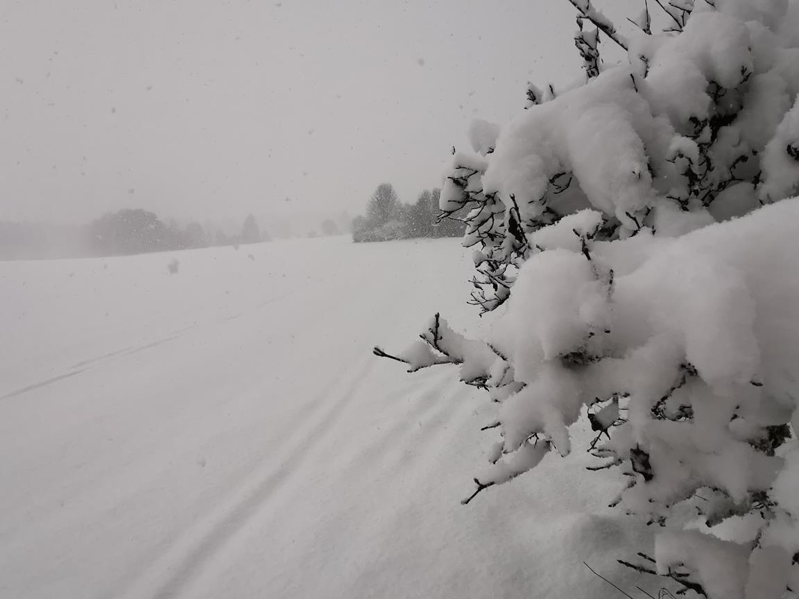 Bolheim_Loipe_Snow_Blickle